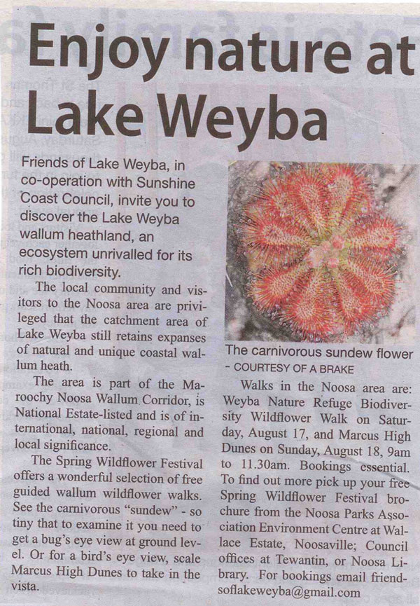 15-August-2013-Noosa-Today-Enjoy-nature-at-Lake-Weyba